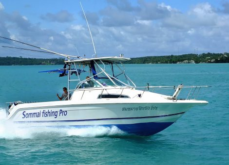Speedboat is great for boating, snorkeling and scuba diving. The boat has a shower of fresh water, WC, masks and snorkels, life jackets.