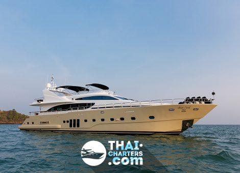 Яхты «Bilgin 96» пользуются огромной популярностью у мировых элит, среди них известные спортсмены и звезды эстрады, бизнесмены и политики, и, конечно же, члены королевской семьи Великобритании.