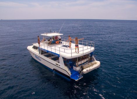 It is well known that today a huge popular demand and popular among tourists and lovers of sea travel are catamarans.