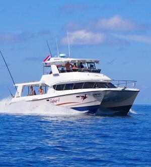 «Tulpar-1» motor catamaran